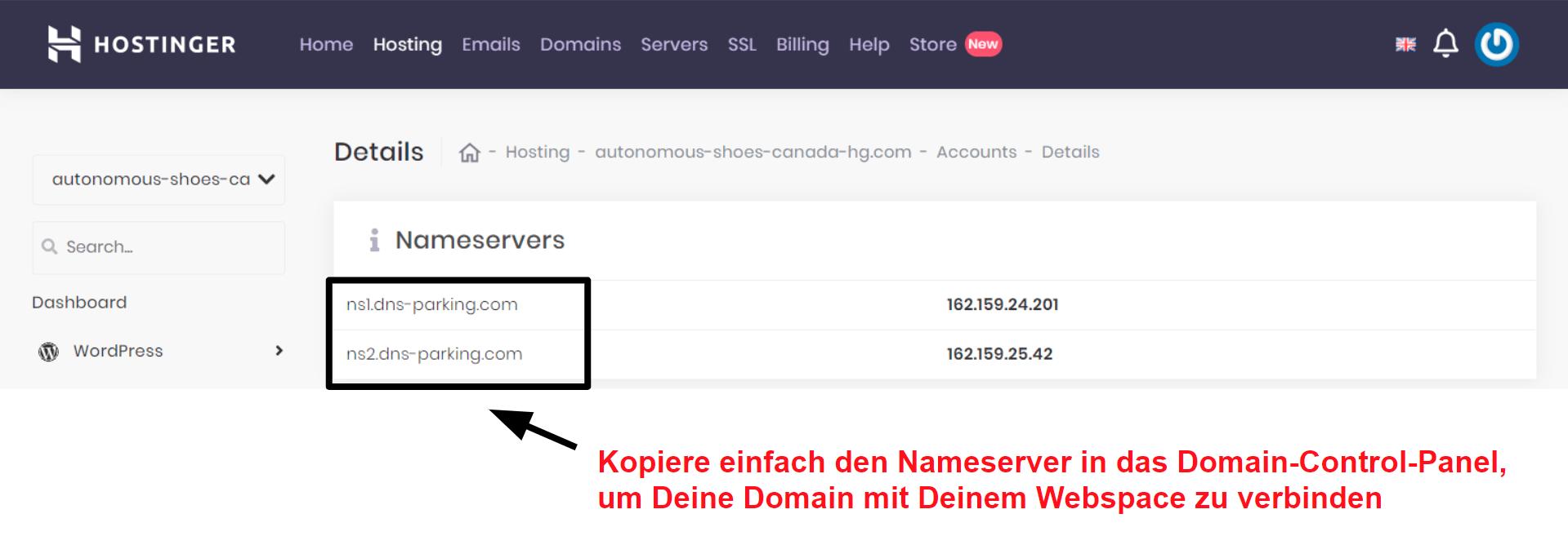 Hostinger domain connection information_DE
