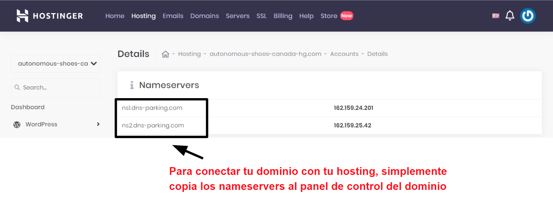 Hostinger domain connection information_ES