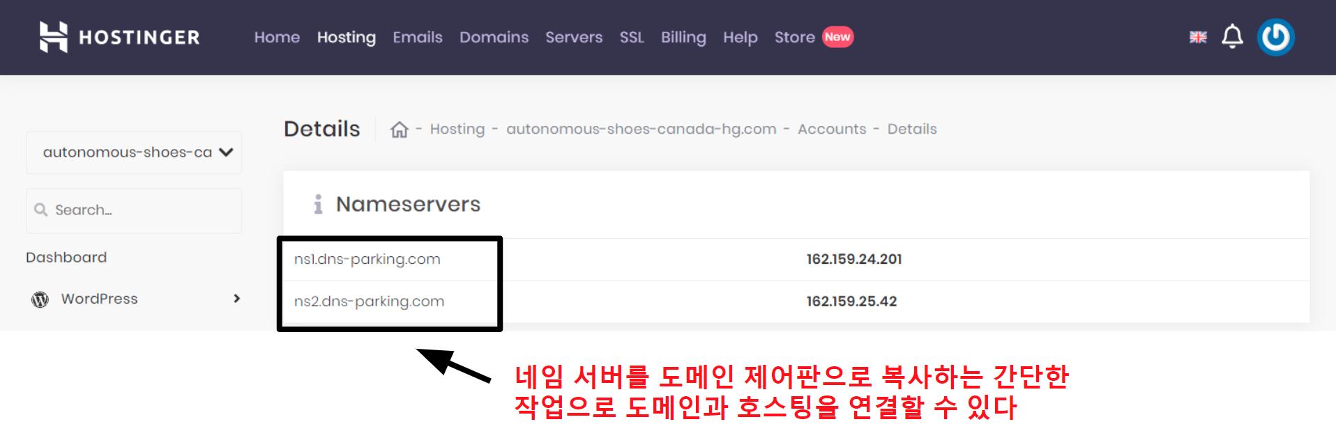 Hostinger domain connection information_KO