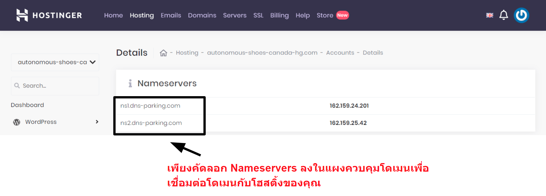 Hostinger domain connection information_TH