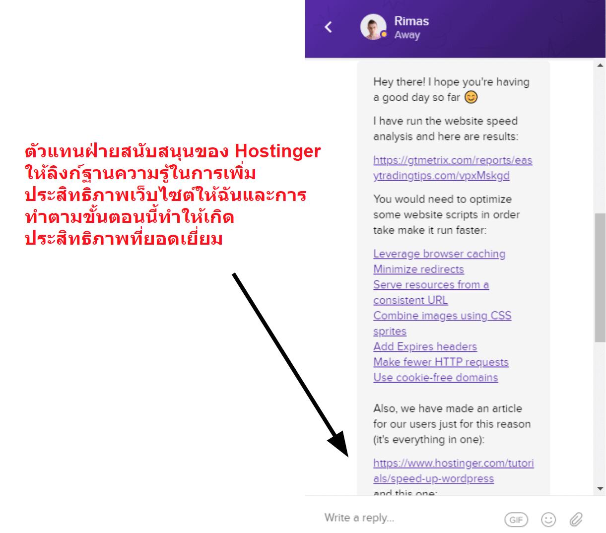 Hostinger live chat optimization support_TH