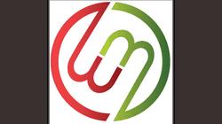 Mambo Microsystems