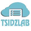 tsidzlab-logo