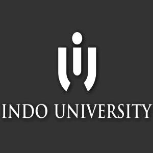 I logo - Indo University