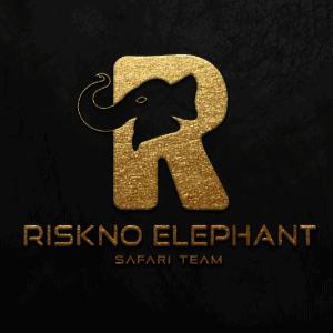 R logo - Riskno Elephant
