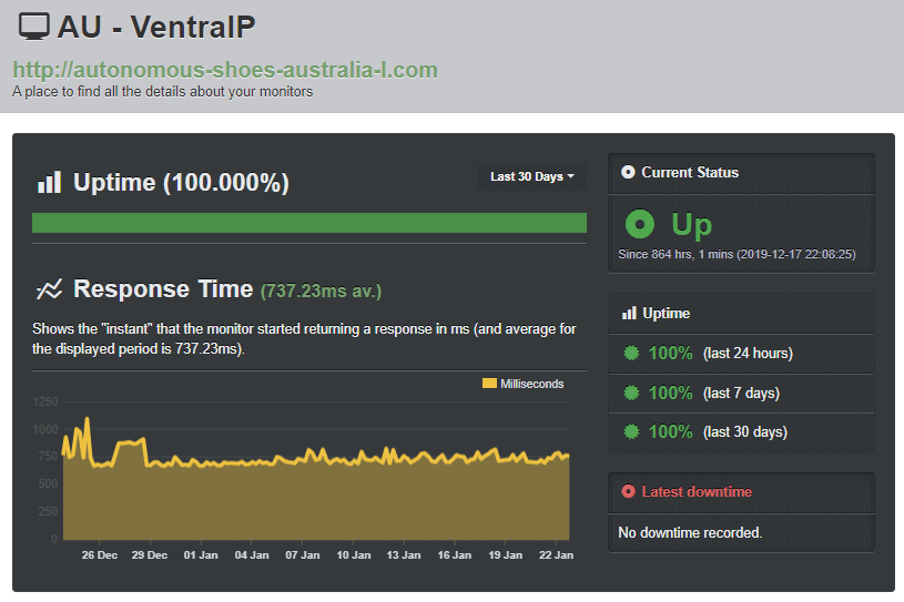 A perfect 100% uptime report