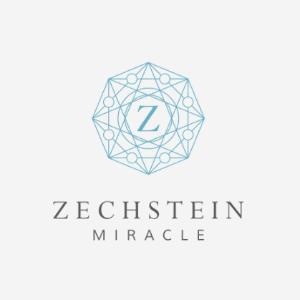 Z logo - Zechstein Miracle