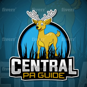 eSports logo - Central PA Guide