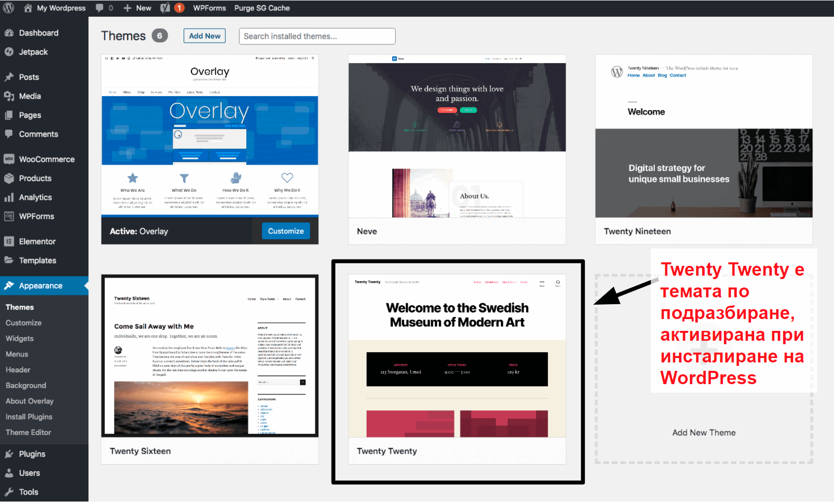 WordPress themes panel BG17